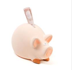 Das Finanzielle spielt fuer Senioren eine ebenso grosse Rolle wie fuer normale Erwerbstaetige