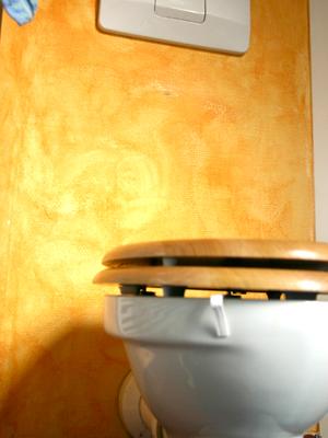 Auch eine Toilette kann eine Herausforderung an eine Einstiegshilfe darstellen