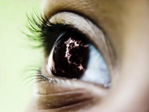 In Europa gehören Augenerkrankungen zu den häufigsten altersbedingten Erkrankungen