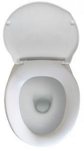 Toilettenaufsätze helfen Senioren beim Verrichten der Notdurft