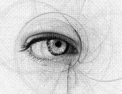 Akupunktur auch für die Augen möglich