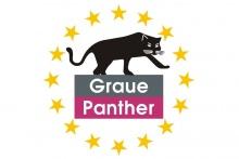 Graue Panther