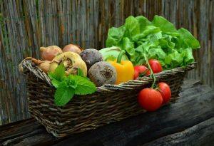 Immunsystem Ernährung