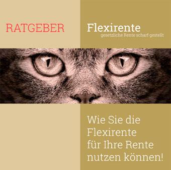 Ratgeber Flexi-Rente